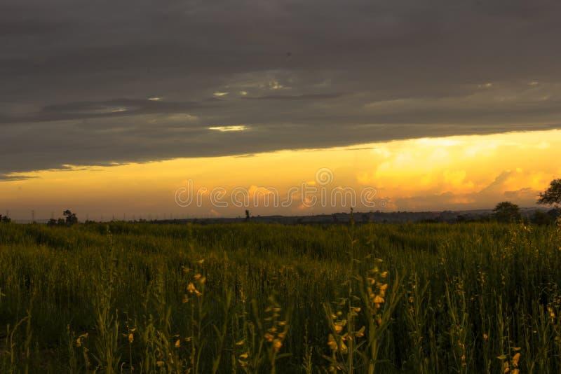 在草甸风景的意想不到的日落 与阴暗云彩的五颜六色的天空 库存照片