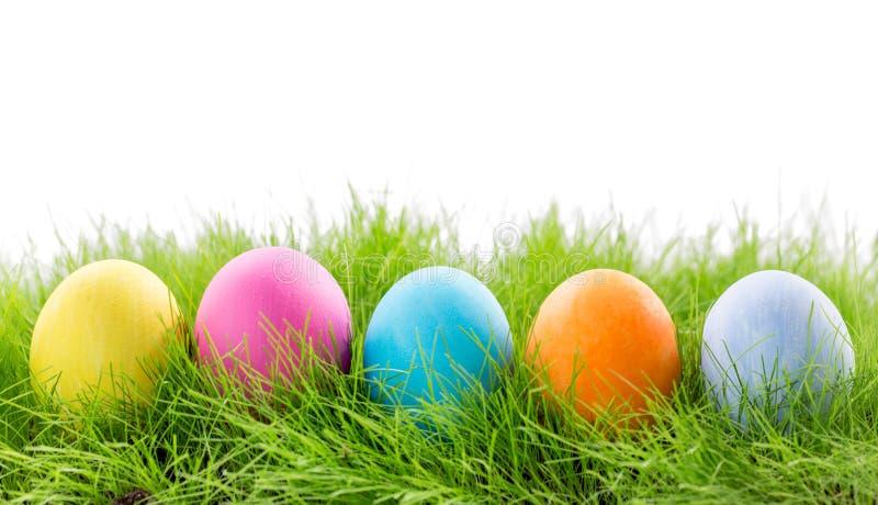在草的复活节彩蛋在白色 图库摄影