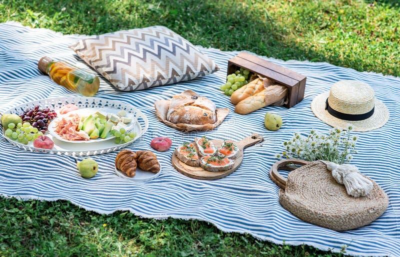 在草的夏天野餐,与三文鱼,葡萄,面包店,果子的三明治 免版税库存照片