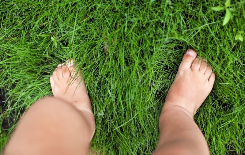 在草的小逗人喜爱的婴孩脚。 库存照片