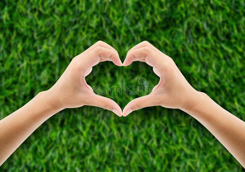 在草的手以举行绿色的心脏手的形式 免版税图库摄影