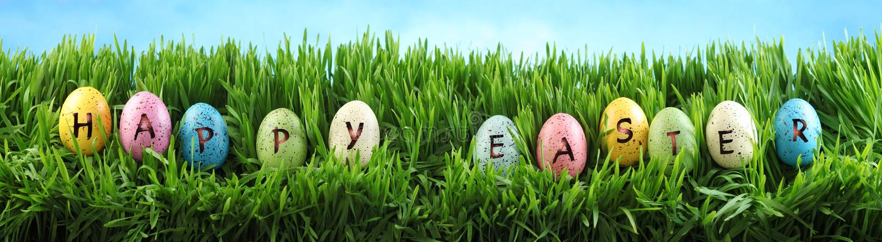 在草的明亮的五颜六色的复活节彩蛋与反对天空蔚蓝的花 库存照片