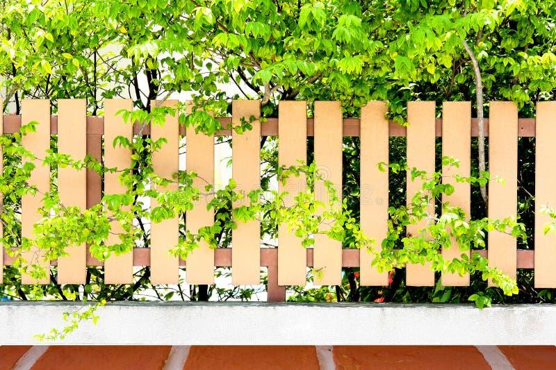 在草的木篱芭与块地板纹理 免版税库存图片