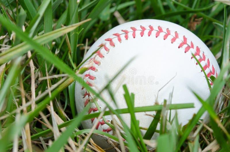 在草的棒球 免版税图库摄影