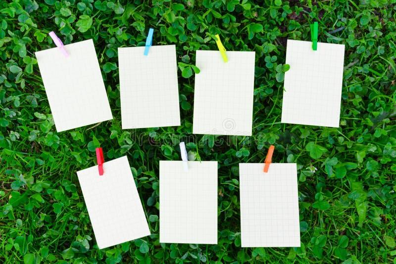 在草的每周日程表与空的纸和木五颜六色的pi 免版税库存图片