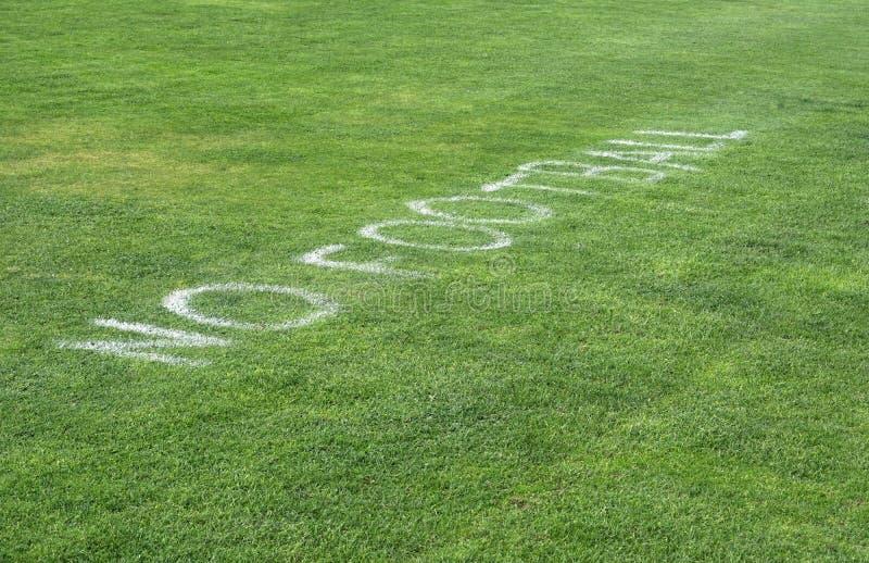 在草的没有橄榄球标志 库存图片
