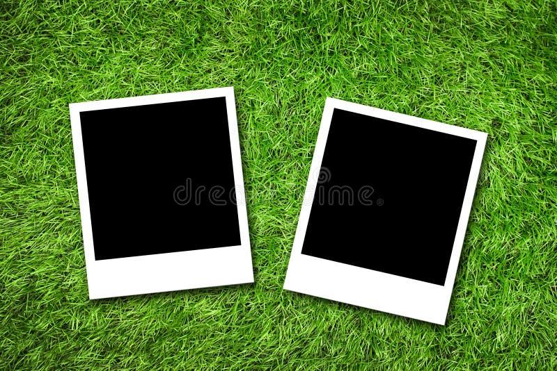 在草的照片框架 库存照片
