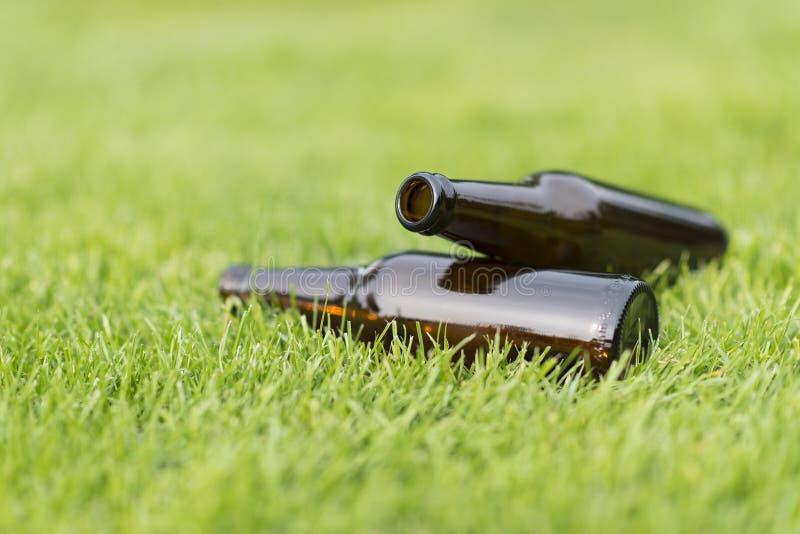 在草的空的啤酒瓶 免版税库存照片