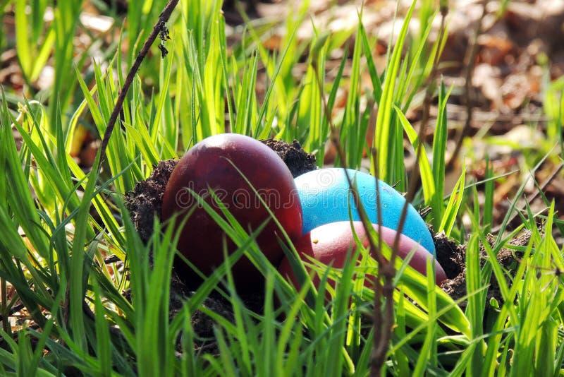 在草的被绘的鸡蛋 库存图片