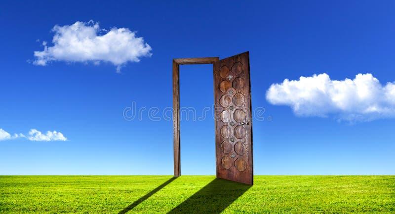 在草的超现实的门 免版税库存照片