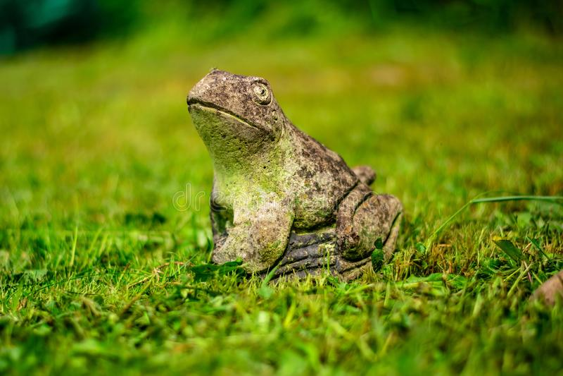 在草的青蛙雕象 库存照片