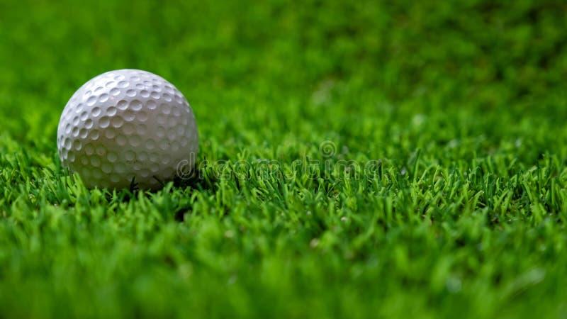 在草的高尔夫球 免版税库存图片