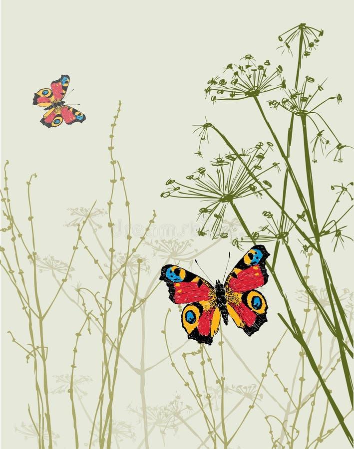 在草的蝴蝶 库存例证