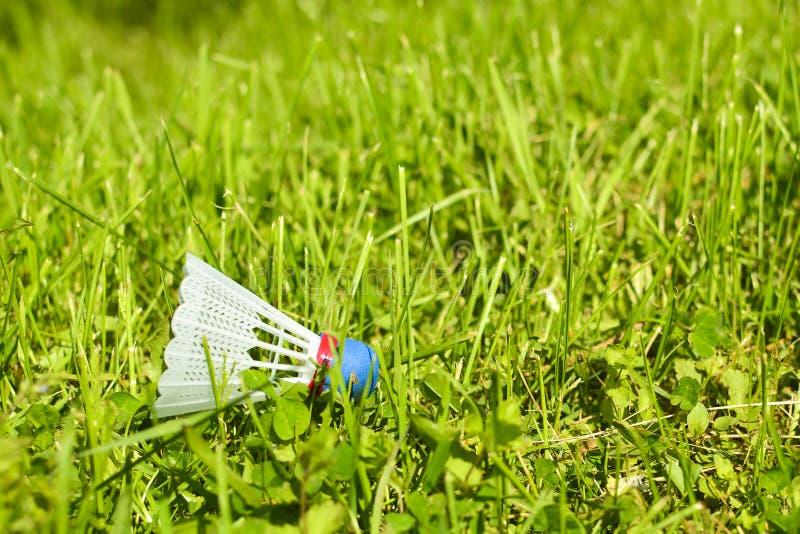 在草的Shuttlecock 在公园在好日子 免版税库存图片
