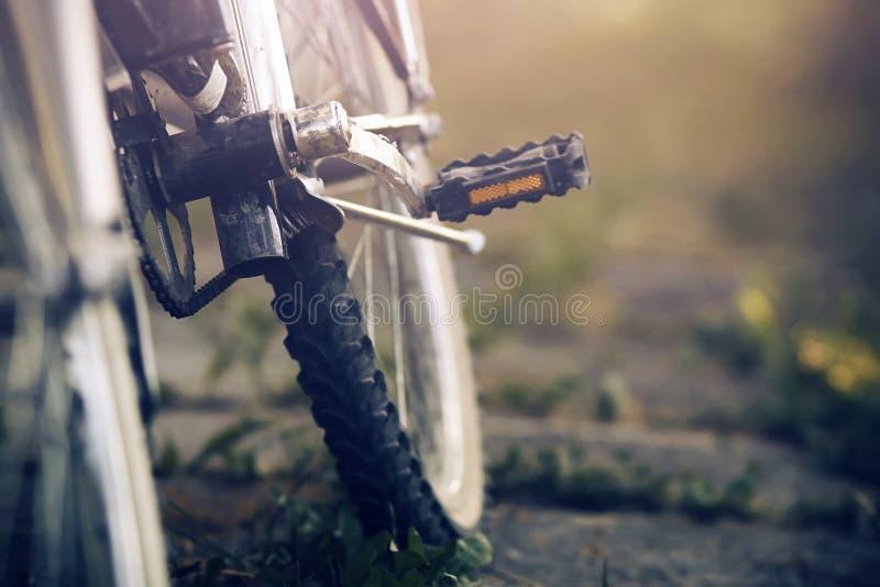 在草附近站立一辆肮脏的自行车的后轮 免版税图库摄影