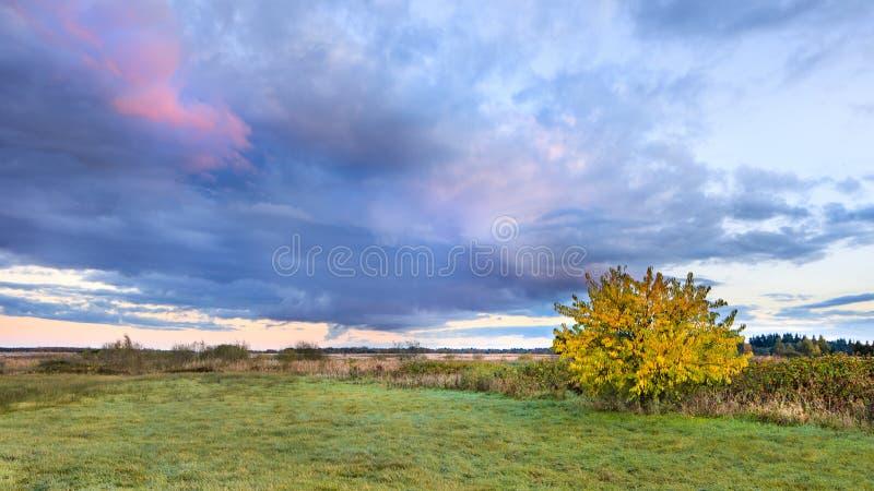 在荒地土地, Goirle,荷兰的秋天日落 库存照片
