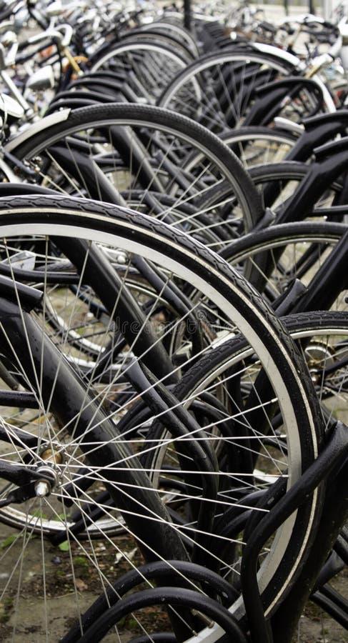 在荷兰停放的自行车 免版税图库摄影