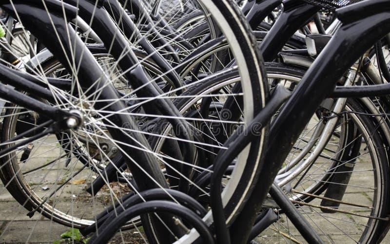 在荷兰停放的自行车 免版税库存图片