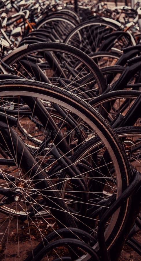在荷兰停放的自行车 图库摄影