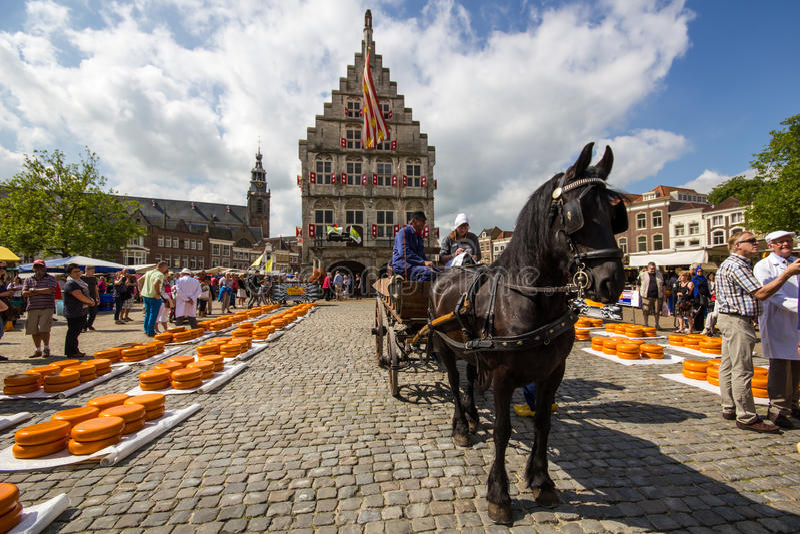 在荷兰扁圆形干酪的荷兰干酪市场 免版税库存图片