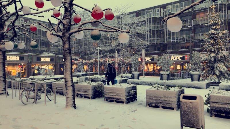 在荷兰的雪 免版税库存图片