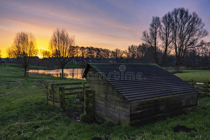 """在荷兰祖特梅尔的""""德魏德韦德""""公园的羊棚上,日出的太阳让天空火了起来 免版税库存图片"""