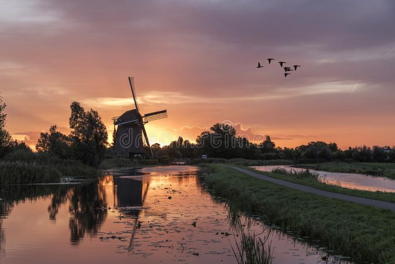 在荷兰风车的日出 库存照片