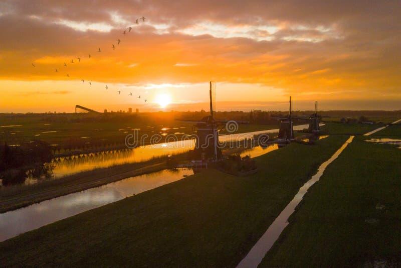 在荷兰风车的lanscape的日出有鸟飞行的 库存图片