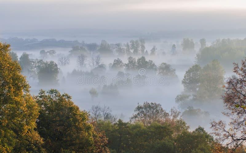 在莫斯科附近的有雾的早晨 免版税库存照片