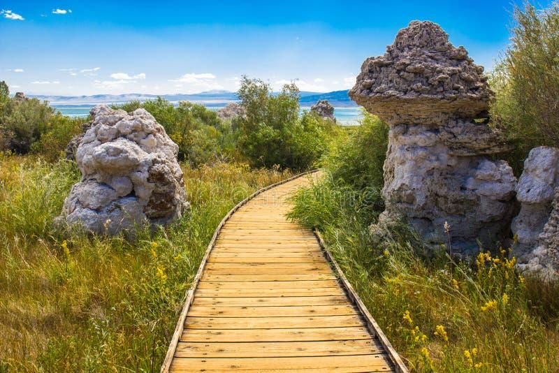 在莫诺湖附近的两凝灰岩岩层 免版税库存图片