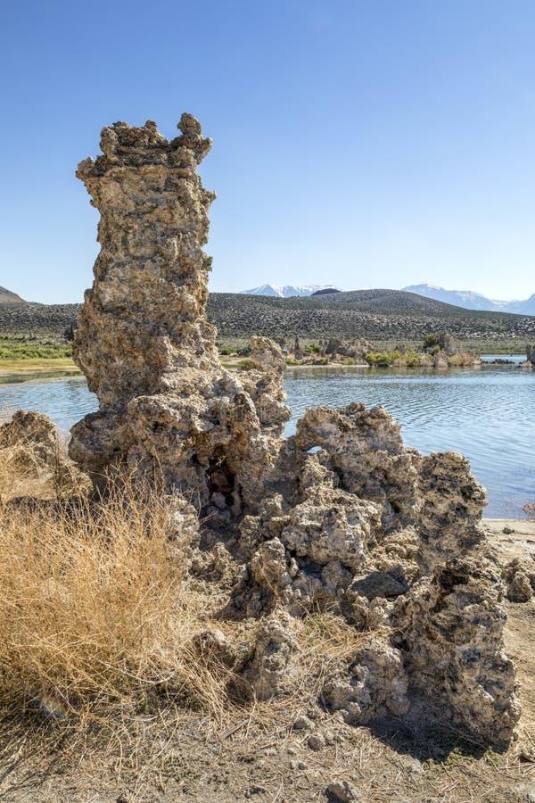 在莫诺湖-加利福尼亚的凝灰岩塔 免版税库存图片