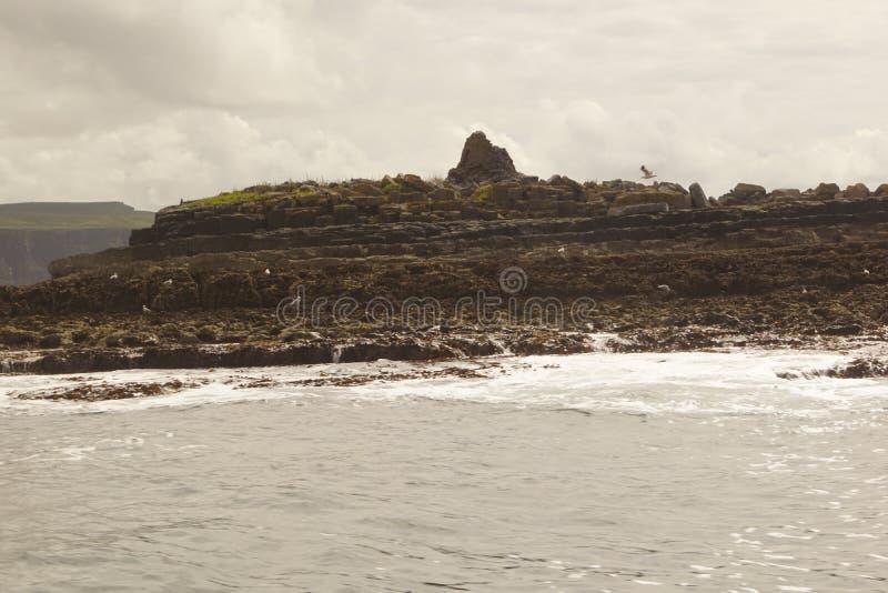 在莫赫悬崖的狂放的大西洋方式小船旅行 库存照片
