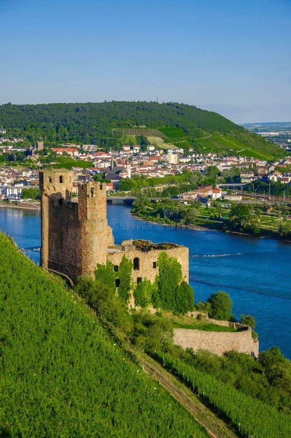 在莱茵河的Ehrenfels城堡在Ruedesheim附近 免版税库存图片