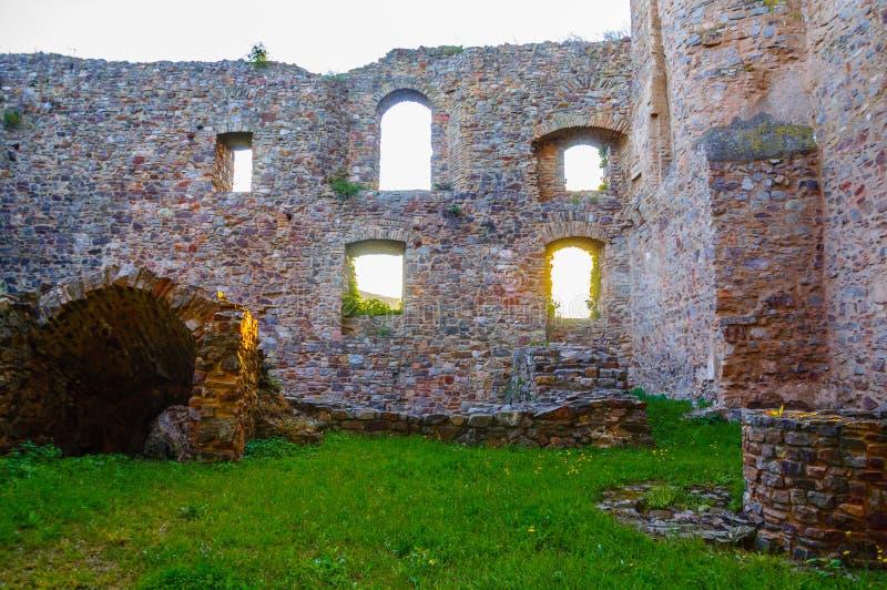 在莱茵河的Ehrenfels城堡在Ruedesheim附近 库存图片