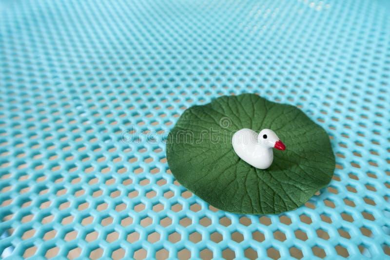 在莲花事假的一只白色陶瓷鸭子 免版税库存照片