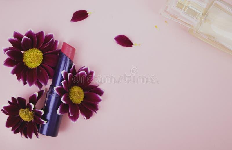 在菊花花的红色口红,香水 桃红色背景-文本的空间 秀丽、秀丽和关心 库存图片
