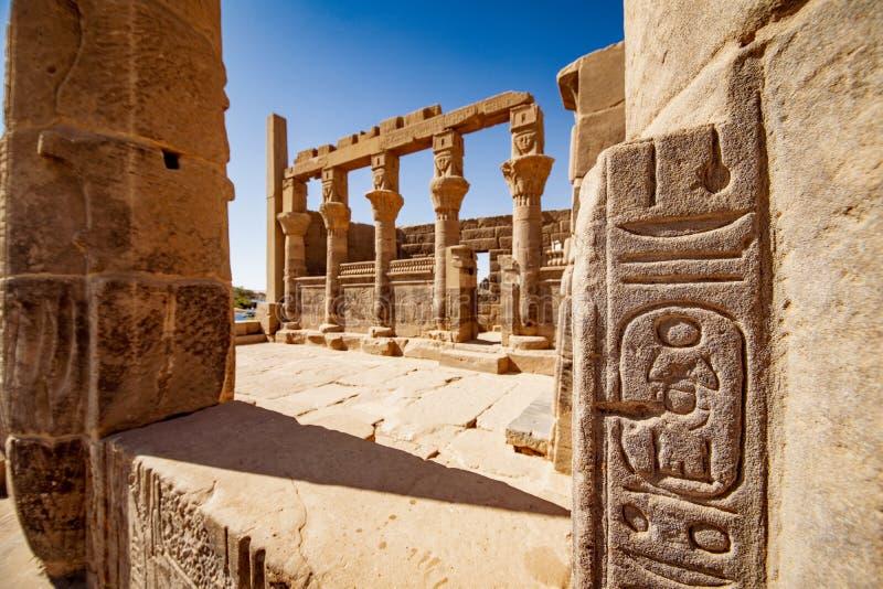 在菲莱寺庙阿斯旺的埃及遗产象形文字 在象形文字的焦点 免版税库存照片