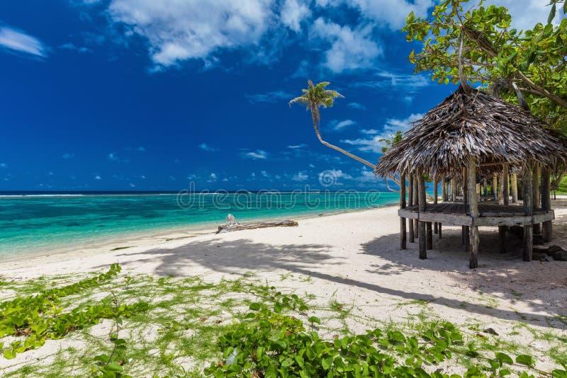 在萨摩亚海岛上的热带充满活力的海滩有棕榈树和fale的 图库摄影