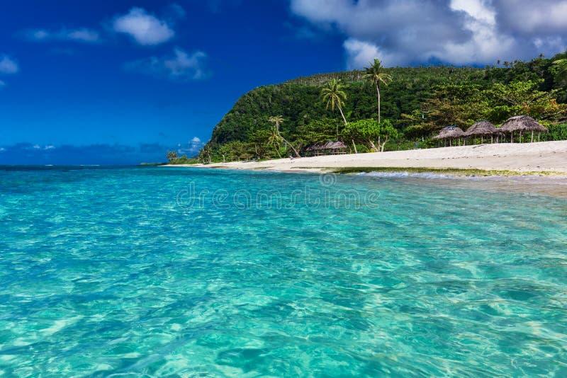 在萨摩亚海岛上的热带充满活力的自然海滩有棕榈树的a 免版税图库摄影