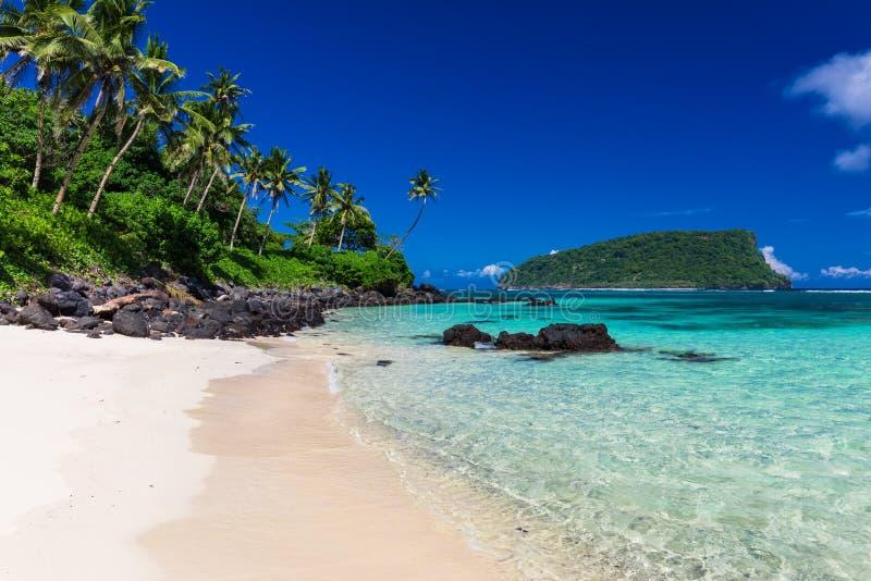 在萨摩亚海岛上的热带Lalomanu海滩有可可椰子树的 图库摄影