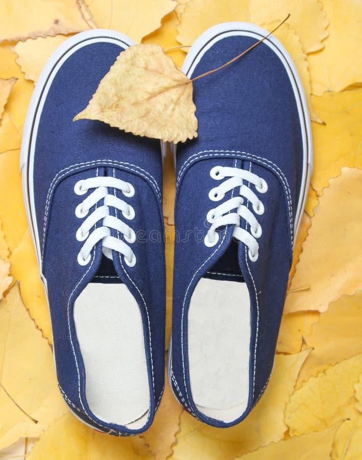 在落叶的蓝色行家运动鞋 秋天时间 顶视图 免版税图库摄影