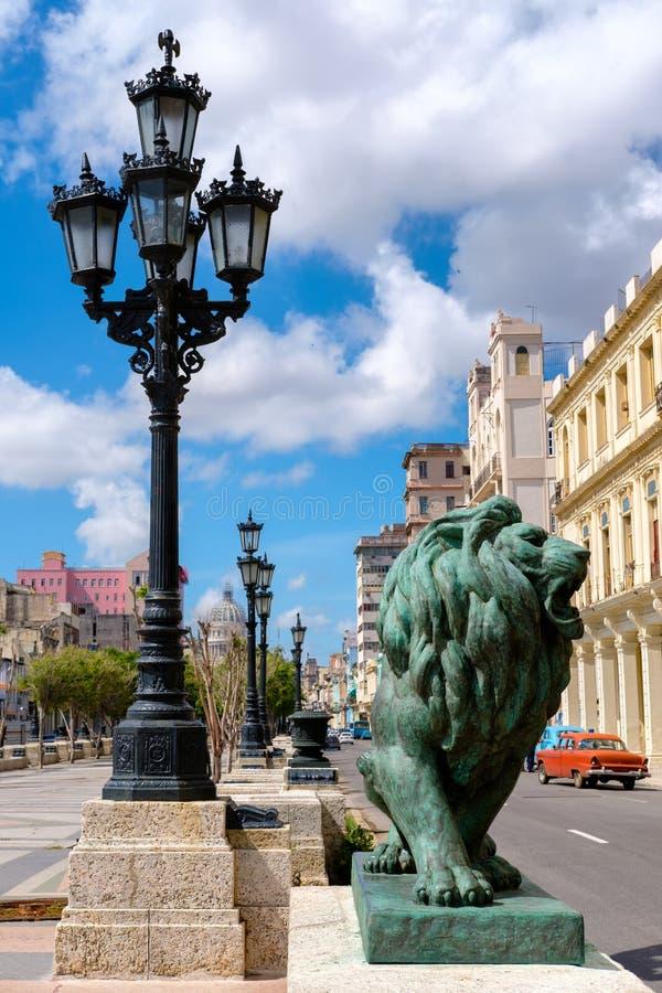 在著名普拉多大道的古铜色狮子在哈瓦那 免版税图库摄影