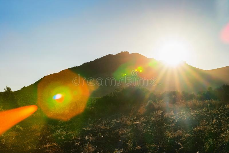 在葡萄园上的美好的日落在Perdaxious卡尔博尼亚伊格莱斯撒丁岛 图库摄影