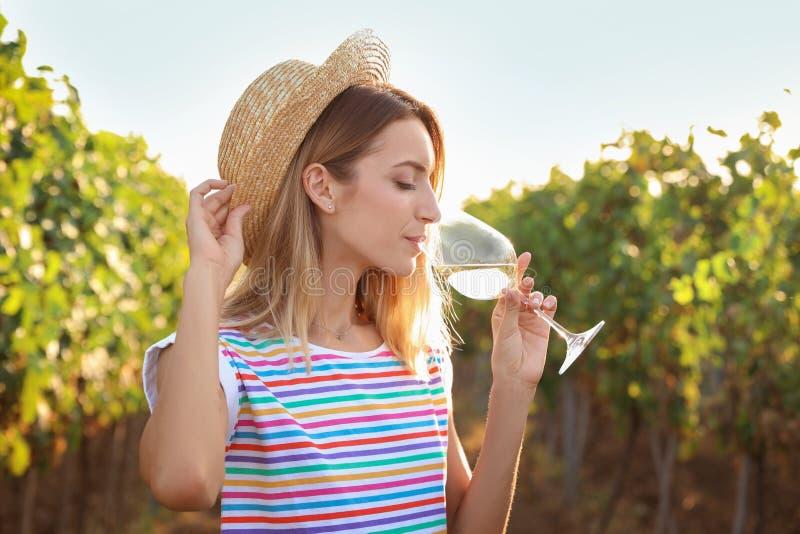 在葡萄园的年轻美丽的妇女品尝酒 库存图片