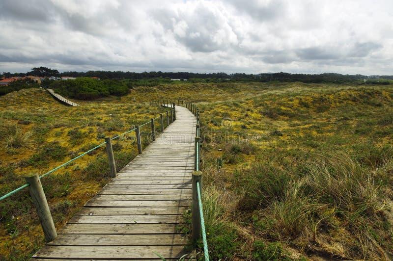 在葡萄牙的北部的木路线 库存照片