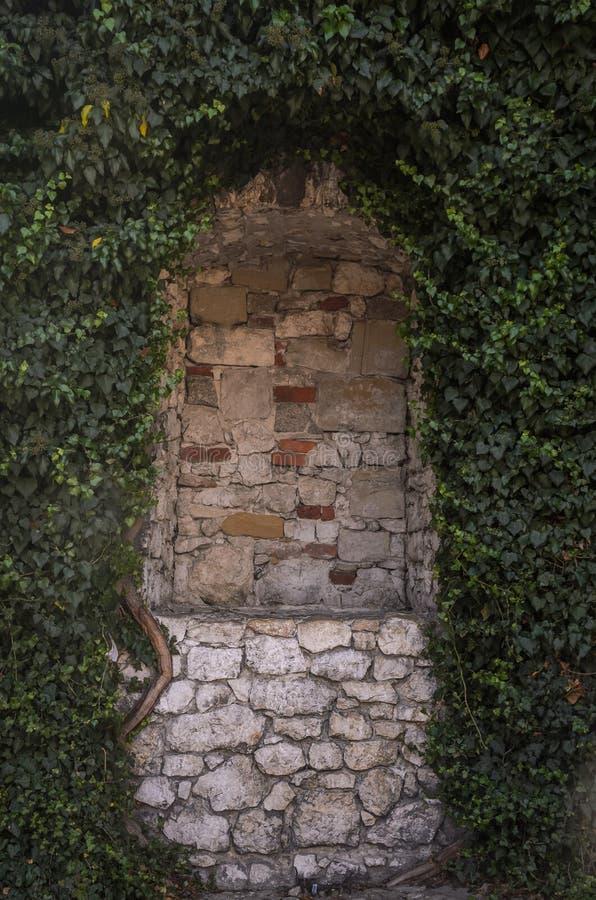 在葡萄的古色古香的砖曲拱 免版税库存图片