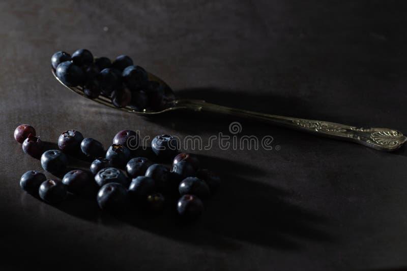 在葡萄酒匙子的低调蓝莓 库存照片