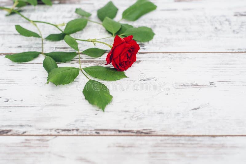 在葡萄酒木桌上的唯一红色玫瑰 免版税图库摄影