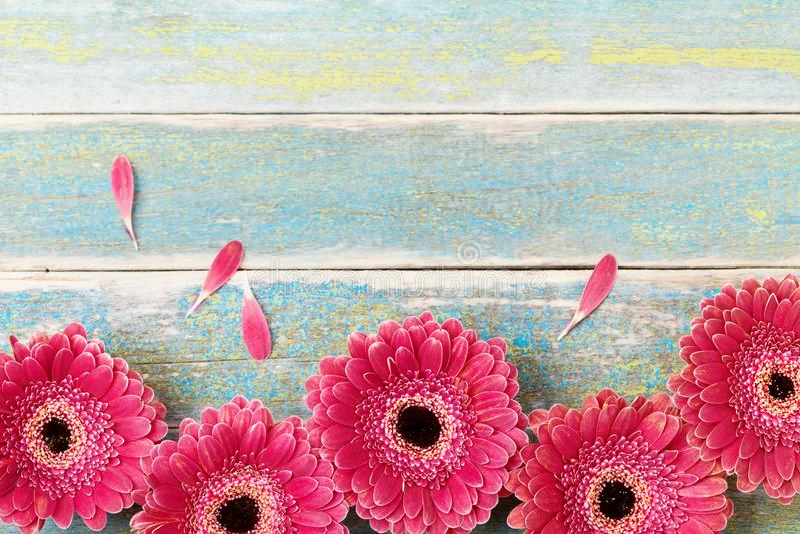 在葡萄酒木背景的新红色大丁草花边界 母亲或妇女天贺卡 土气样式 顶视图 图库摄影