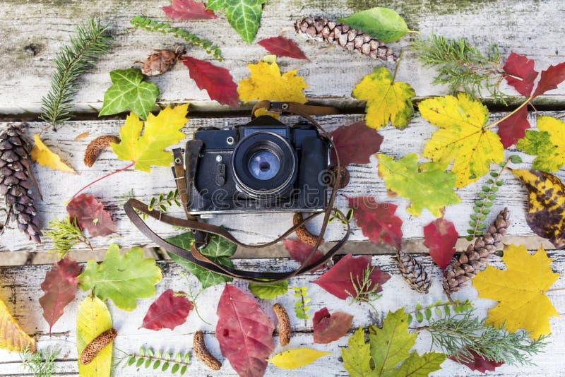 在葡萄酒木背景的老减速火箭的照相机与秋叶 库存图片